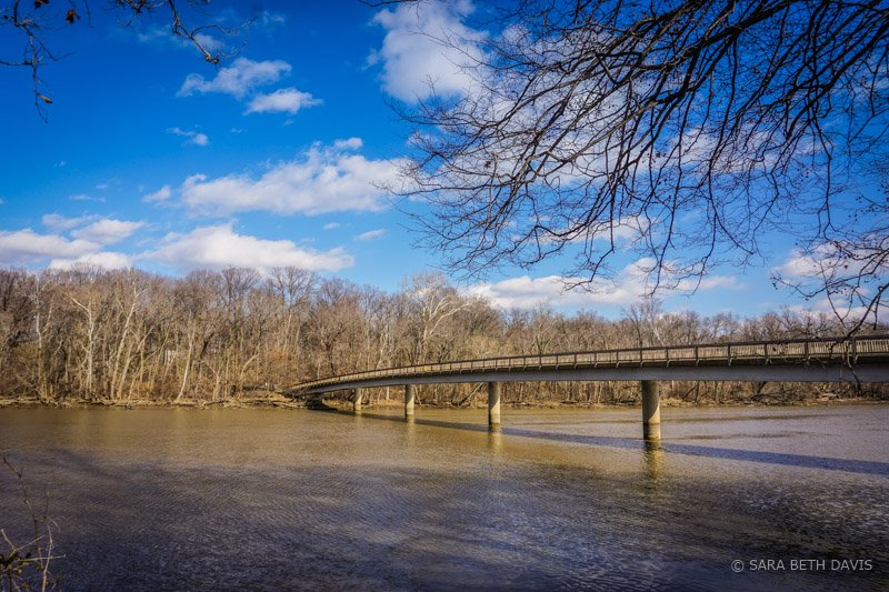 Hiking in DC on the Theodore Roosevelt Island Hiking Trails